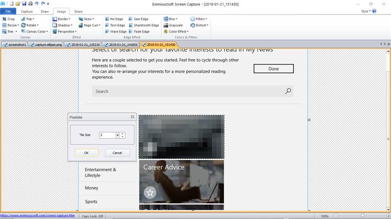 Screen capture software - Screen shot software, Screen grab